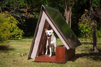 Enviro Dog - SHM Architects - Goff Custo