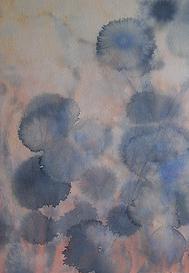 Flores-de-otoño-2004-467x675.png