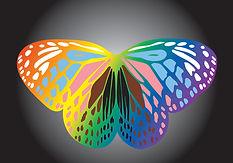 Pride Butterfly v2.jpg