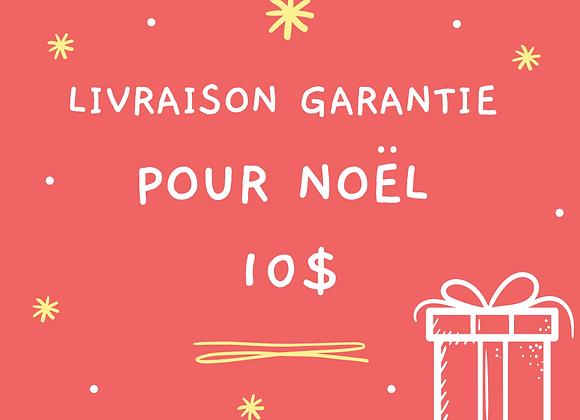 Livraison garanti avant Noël QUÉBEC seulement + numéro de suivi