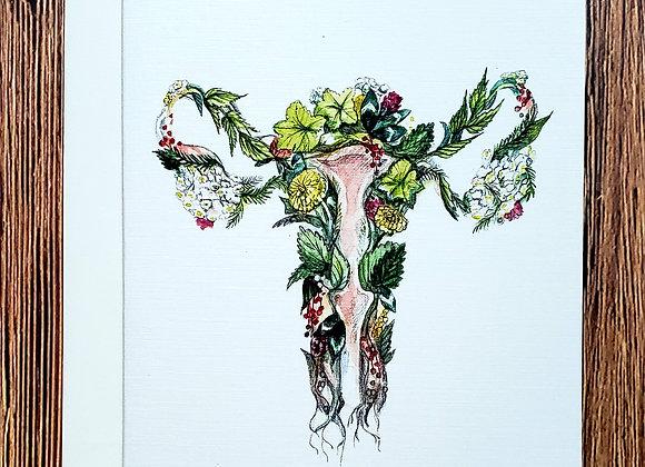 Utérus - Carte à souhaits - Mathilde Cinq Mars illustration