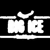 logo_big_ice_zona_patagonia_web_2019.png