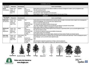 Descriptions essences distribution de pl