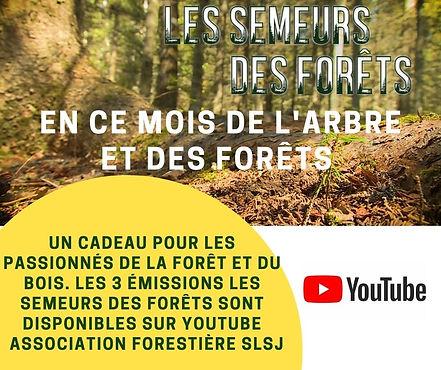 Visuel Les Semeurs des forêts Youtube Pu