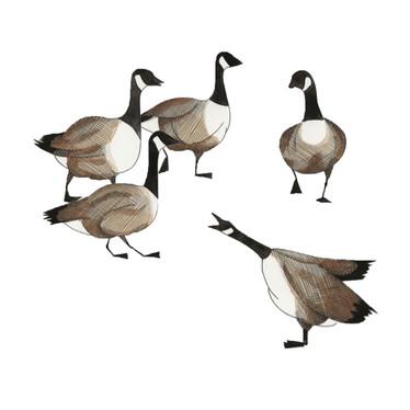 walking geese.jpg