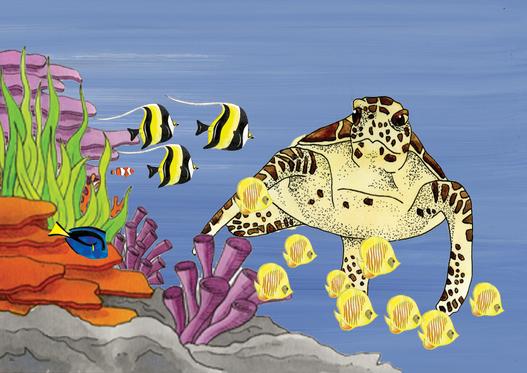 turtles postcard.png