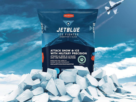 Jet Blue Ice Fighter