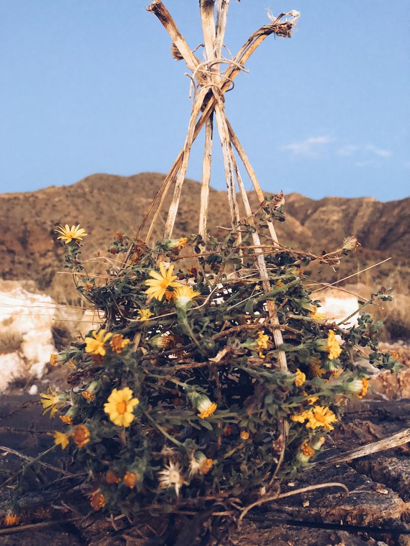 Installation Basket Weave