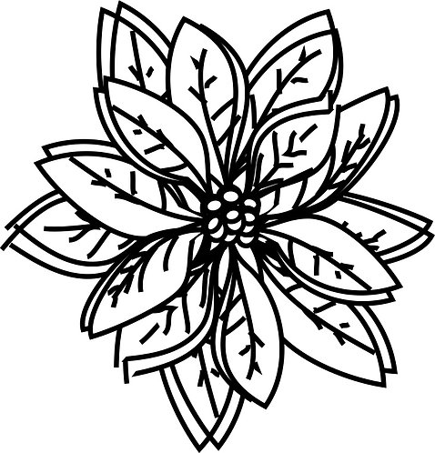Poinsettia Doodles