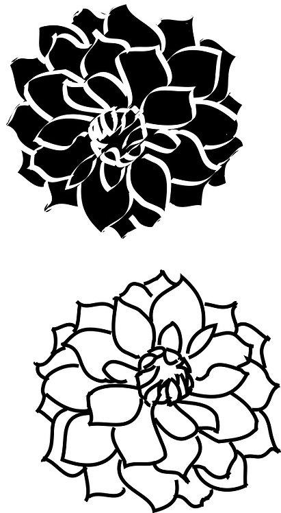 Mini Funky - Chrysanthemum