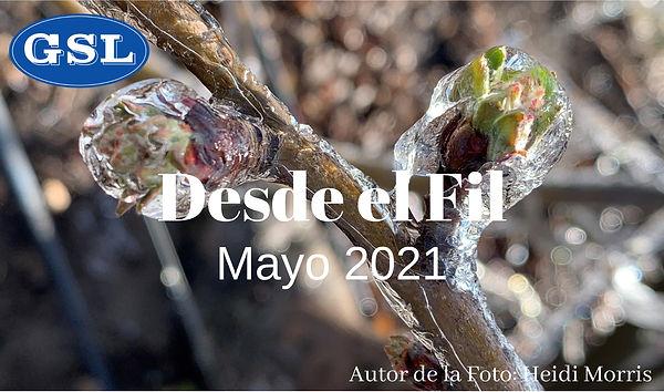 May Newsletter 2021- SPN.jpg