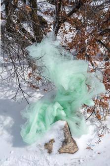 Artifice in Nature series, 2019