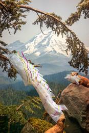 Artifice in Nature:  Marmots