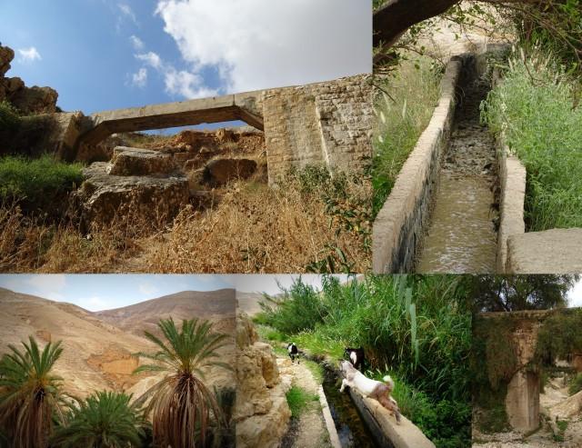 Walking in Palestine