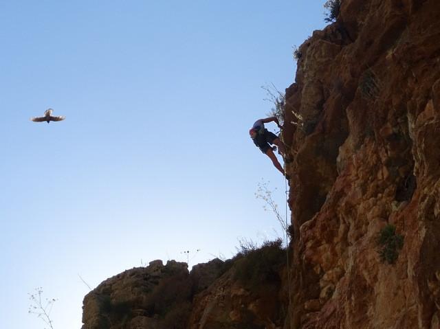 Rock climbing Palestine