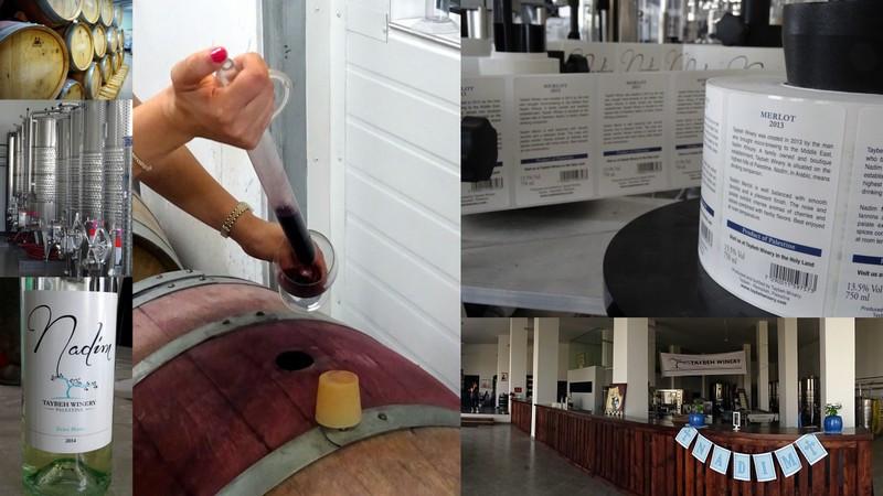 Taybeh Winery Palestine