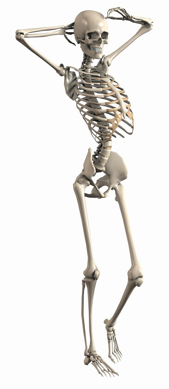 Skeleton בודהיזם