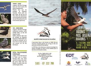 Aidons nos oiseaux marins !