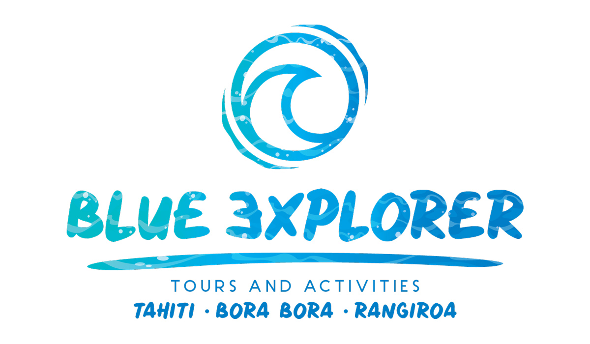 Logo-Blue-Explorer-3