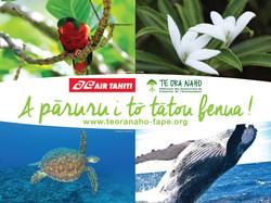 4x3-Air-Tahiti-FAPE