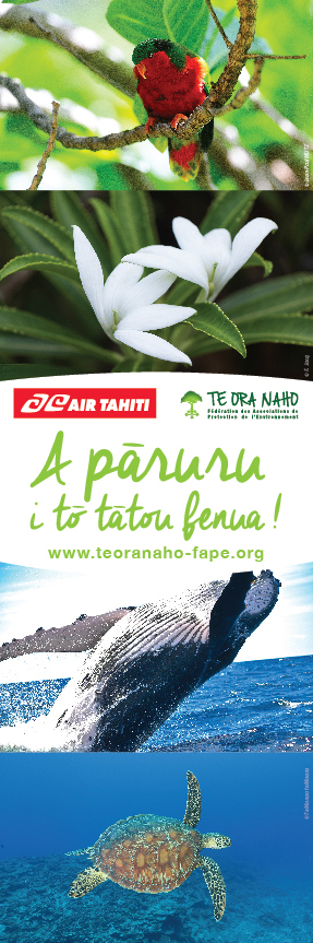 6x2-Air-Tahiti-FAPE