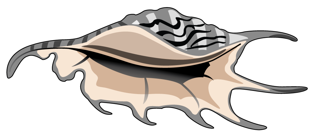 Refonte-logo-PPNTO-shell