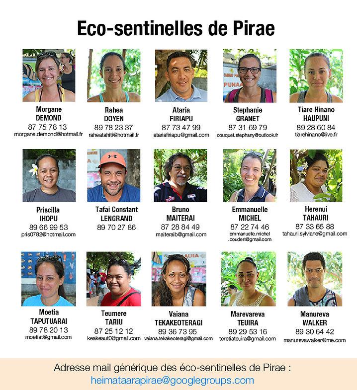 E-S-Pirae.jpg