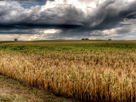 Making It Rain: A Timeline of Weather Control by Sam Brasch