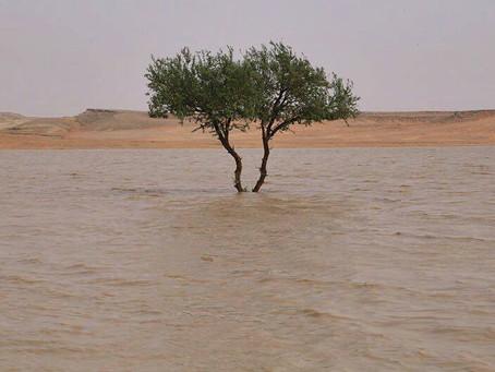 Rain in Riyadh/ Atlantic Rain Corridor