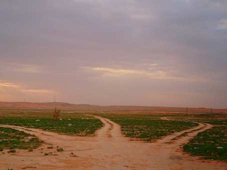 KSA Rain aftermath,This spring has dried 15 years ago became alive yesterday 20/11/18 7 AM