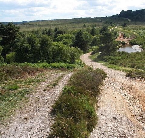 Woodbury_Common-Neothera-Saga.jpg