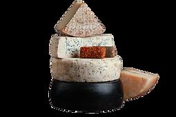 cheese_main.png