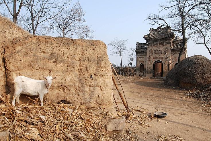 China's vanishing worlds 4.jpg