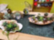 succulent art3.jpg