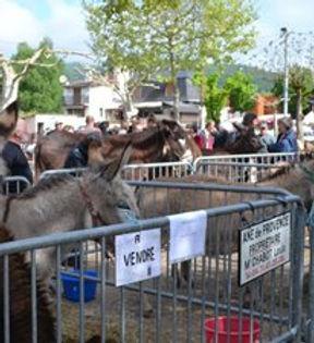 La foire aux ânes et aux mules