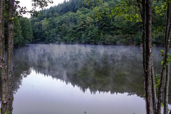 Lac sous la brume