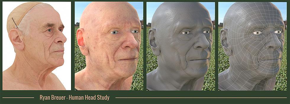 Human Head Study