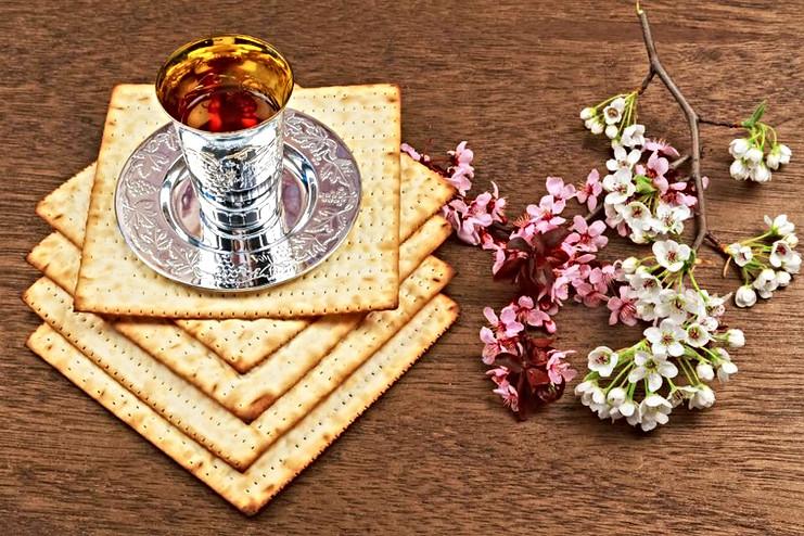 Passover Seder Celebration