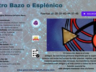 El centro esplénico o Bazo