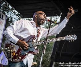 5Bradenton Blues Fest 2018.jpg
