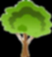 tree_edited_edited.png