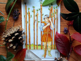 Hard Cards Series: The Nine of Wands