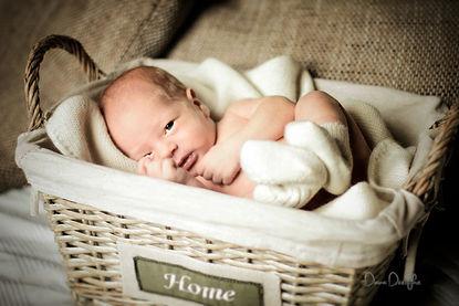 Newborn Session by Diana Dreifke