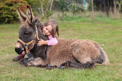 Mädchen umarmt ein Eselfohlen