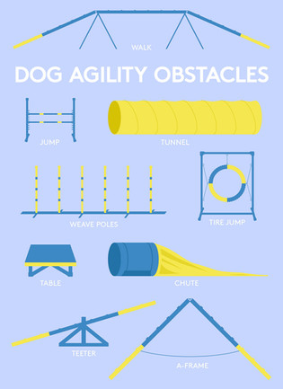 Dog Agility Illustrations