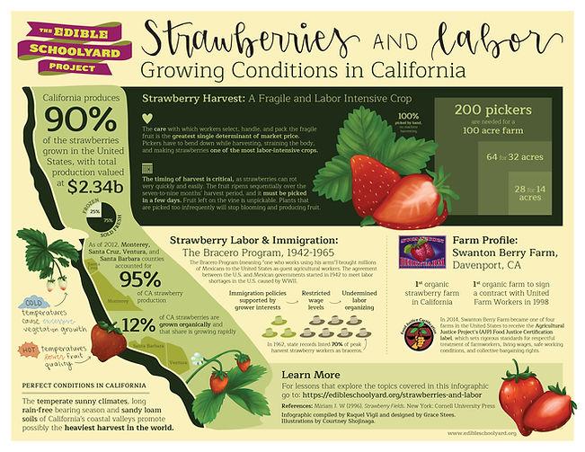 EdibleSchoolyardProject_Infographic.jpg