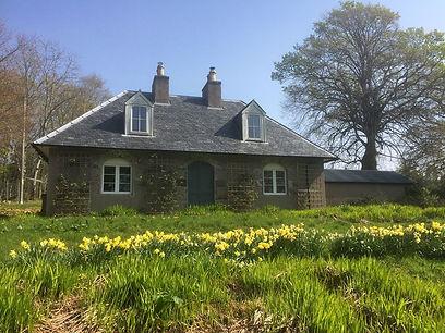 cottage garden 9.jpg