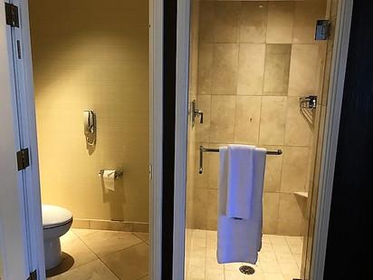 shower and watercloset