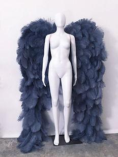 WingsGrau.jpg