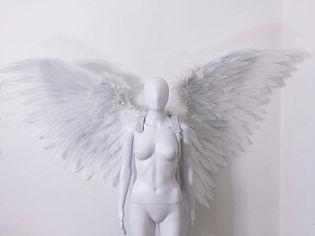 WingsWhite.jpg